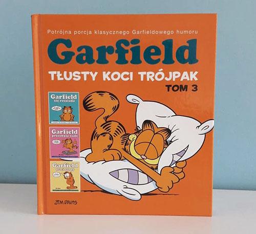 Garfield tom 3 recenzja